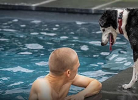 hond bij zwembad