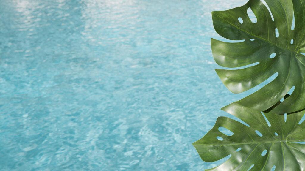 ecologisch-zwembad